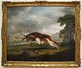 George stubbs, cane da caccia che insegue un cervo, 1762 ca..JPG