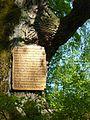 Gießen-Rödgen, Alte Eiche 04.jpg
