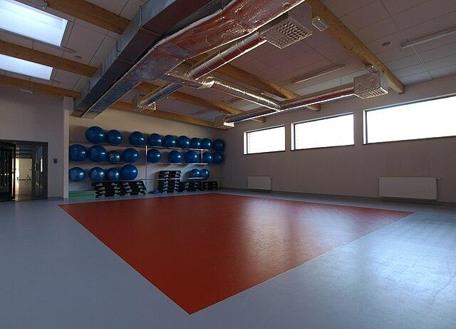 File:Gliwice Oriona Olimpijczyk sala fitness 04 04 2010 P4049149.JPG - Wikimedia Commons