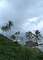 Goa - An Overcast Season (34).JPG