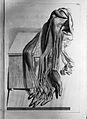 Govard Bidloo, Ontleding des menschelyken lichaams... Wellcome L0025648.jpg