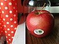 Grójeckie (apple) in Poznan (1).jpg