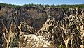 Grand Canyon of the Yellowstone River (Yellowstone, Wyoming, USA) 200 (46785699285).jpg