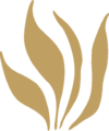 Grass Leaves Ornament Gold Right.png