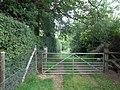 Green lane - geograph.org.uk - 2346451.jpg