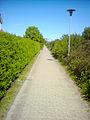 Green path in Otterup.JPG