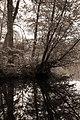Großer Tiergarten in Berlin, Bild 11.jpg