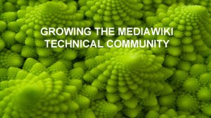 Growing the MediaWiki Technical Community Dev Summit 2018 session slides