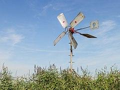 """Grutte Griene, eiland in het natuurreservaat """"Sneekermeer"""". (d.j.b.) 06.jpg"""