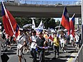 HK Causeway Road July 1 march 2010 Republic of China flags.JPG