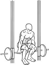 hack squat machine backwards