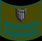 Haga-1950-1970-6.png