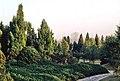 Hangzhou, Botánico 1978 02.jpg