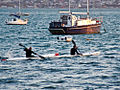 Harbour Kayakers (5666010101).jpg