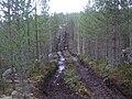 Harvester tracks Jyväskylä.jpg