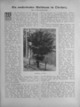 Harz-Berg-Kalender 1935 044.png