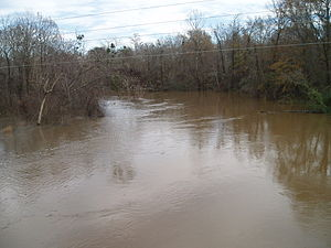 Hatchie River - The Hatchie River near Bolivar, Tennessee