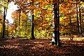 Herbst auf dem Weikersheimer Karlsberg. 01.jpg
