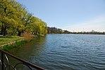 High Park, Toronto DSC 0221 (17393288301).jpg