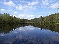 Hindtjarnen looking W Vastergotland Sweden 09June2020.jpg