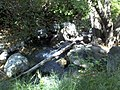 Holly Jim Trail - panoramio (2).jpg