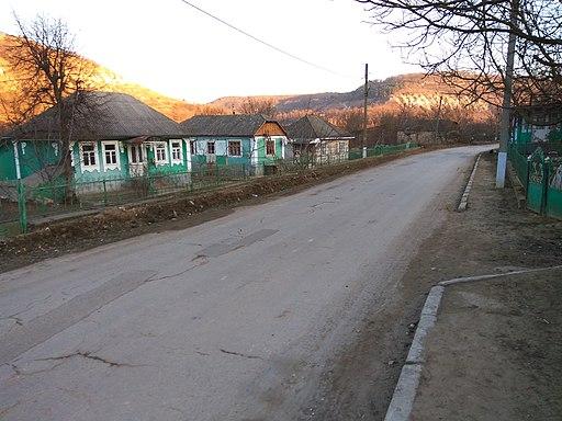 Houses in Unguri