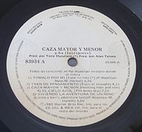 Hunting High and Low - Caza mayor y menor - A-ha - Vinyl.JPG