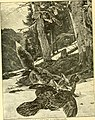 Hunting and trapping stories; a book for boys (1903) (14779336731).jpg