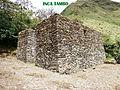 INCA TAMBO.jpg
