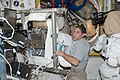 ISS-37 Michael Hopkins works with a spacesuit in the Quest airlock.jpg