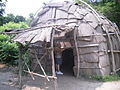Indiaans huis Plimoth Plantation.JPG