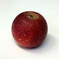 Ingrid Marie (apple).jpg