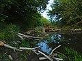 Irpin river Stoyanka3.JPG