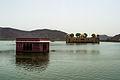 Jal Mahal - Jaipur, Rajasthan.jpg