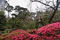 Japanese Garden 1 (214349979).jpeg