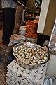 Japanese quail Coturnix japonica eggs by Dr. Raju Kasambe DSC 3217 04.jpg