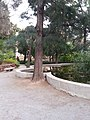 Jardín de Monforte 65.jpg