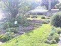 Jardin botanique (Strasbourg) (4).jpg