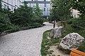 Jardin de Vitaly juin 2020 9.jpg