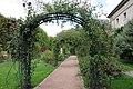 Jardin des Plantes - Roseraie 004.JPG