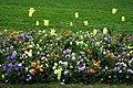 Jardin massey tarbes 1.jpg