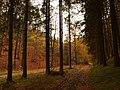Jesenné cesty - panoramio.jpg