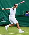 Jesse Huta Galung 3, 2015 Wimbledon Qualifying - Diliff.jpg