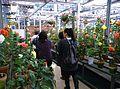 Jindai Botanical Garden-6.jpg