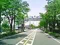 Kōnosu Keyaki-dōri road 136.jpg