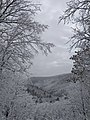 Kaaterskill Clove 2016.jpg