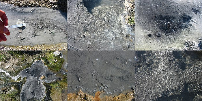 Each of these six hot springs (from top left, clockwise: Uzon4, Uzon7, Uzon8, Uzon9, Mut11, Mut13) in Kamchatka were found to contain Korarchaeota.