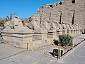 Karnak Tempel Dromos 23.jpg