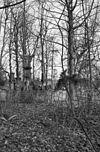 kasteelterrein - buren - 20045223 - rce