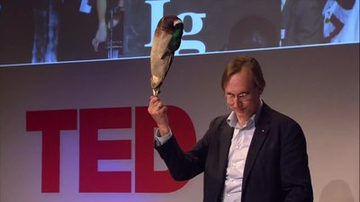 File:Kees Moeliker, How a dead duck changed my life.webm